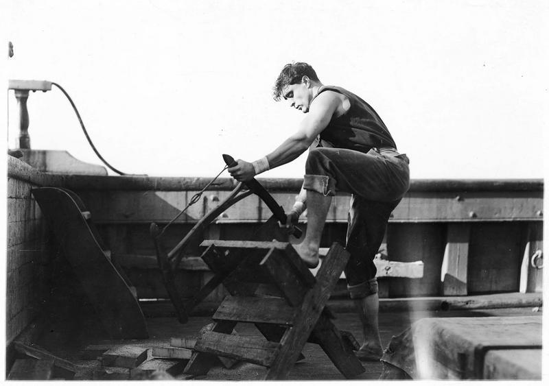 Shark Rawley (G. Walsh) sciant du bois sur le bateau