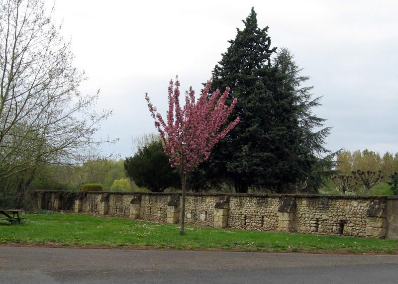 Mur de clôture. Mur en tuffeau avec contreforts et chantepleures.