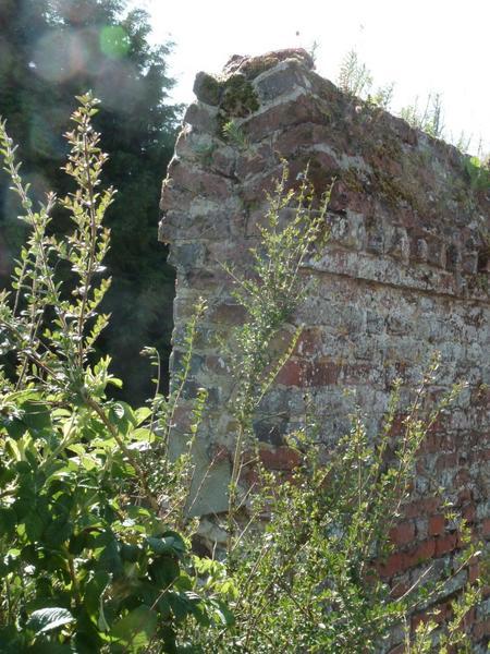 Mur de clôture. Chaperon en briques.