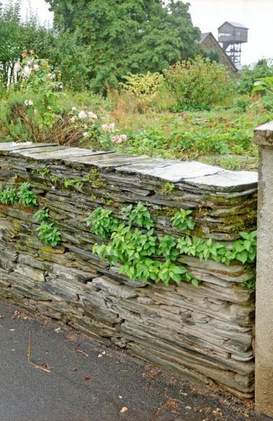 Mur de clôture. Mur de clôture en plaques de schiste de récupération.