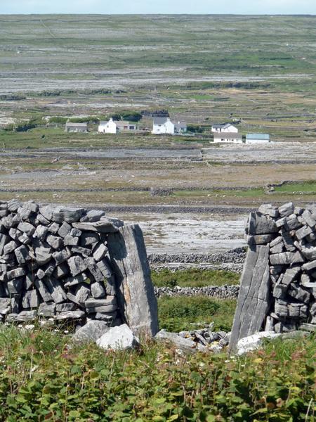 Mur de clôture. «Porte» du champ ouverte.
