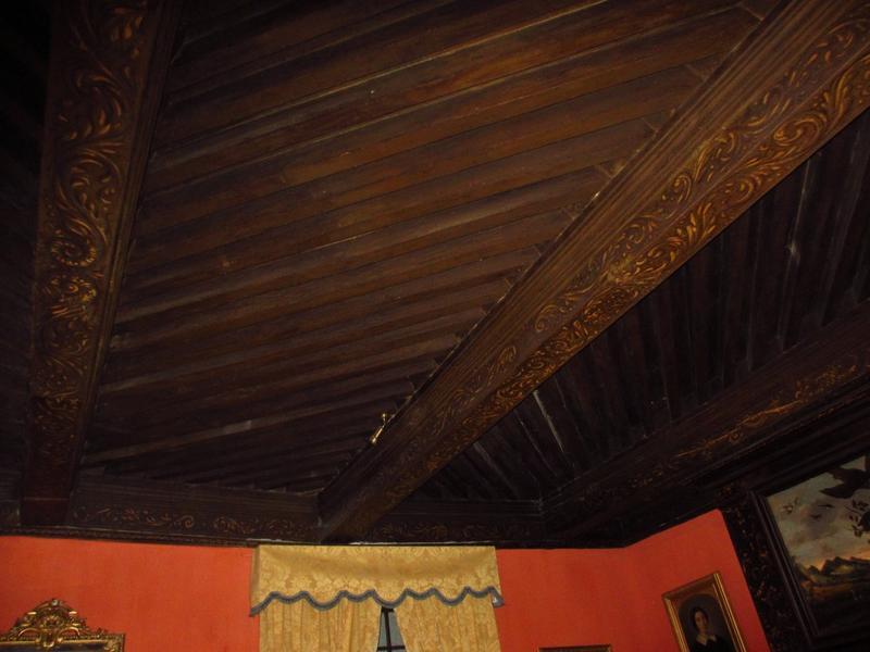 Chambre aux oiseaux, 1er étage de l'aile sud. Plafond à la fougère