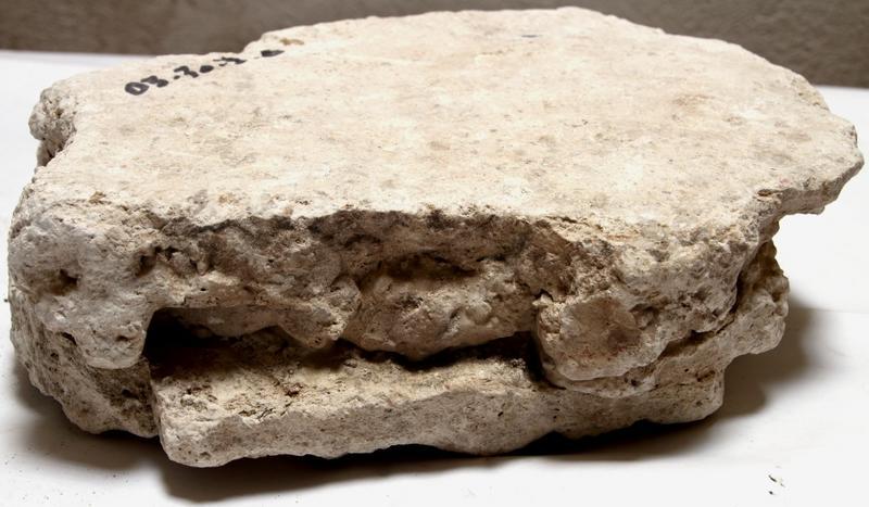 Morceau d'entrevous plâtre n°2; vue de côté