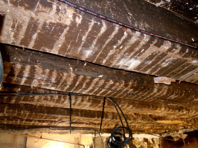 Plafond de l'arrière-boutique, poutraison