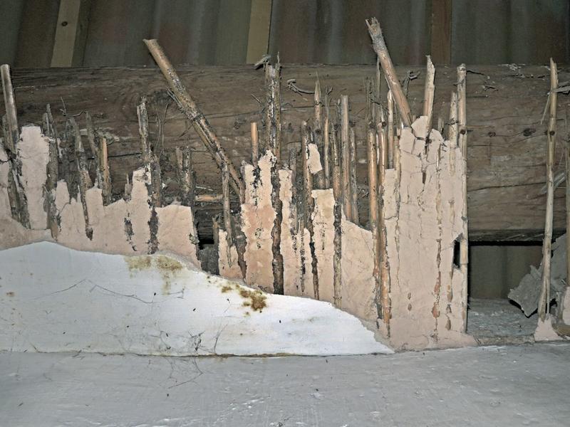 Élément de plafond en mortier de plâtre sur lattis de canes  et enduit plâtre ayant échappé à la dépose.