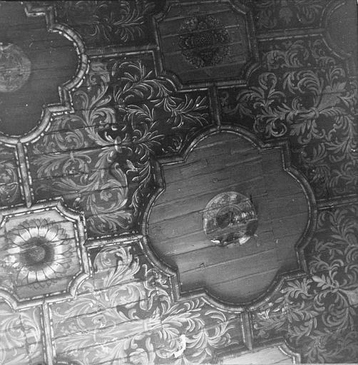 Plafond : détail des caissons et du décor peint de rosaces et de rinceaux végétaux
