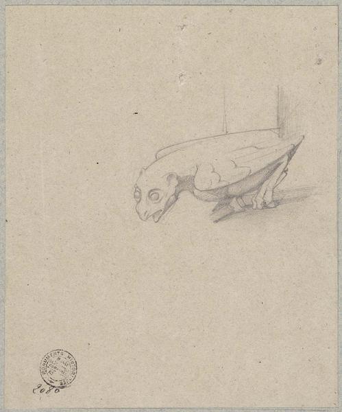 Gargouille non localisée