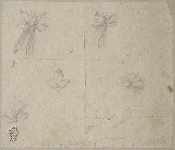 Sacristie, cloître, feuillage et crochet de la galerie B