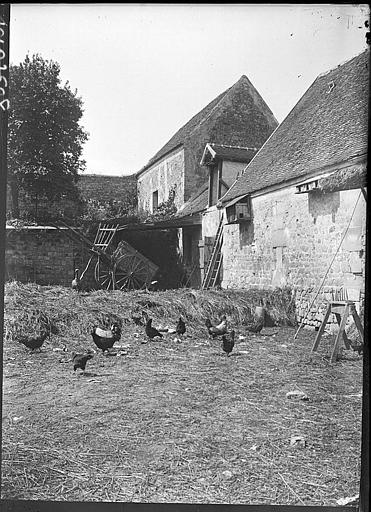 Cour de ferme : volailles, carriole