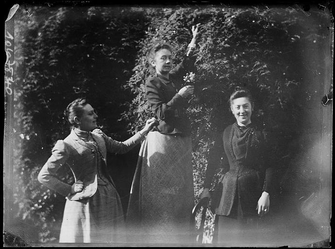 Trois femmes posant devant un arbre