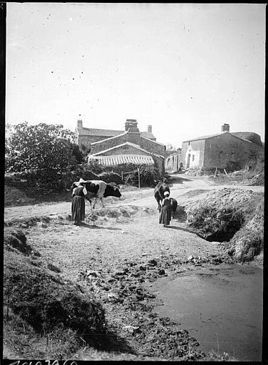Paysannes en costume traditionnel et boeufs devant une ferme