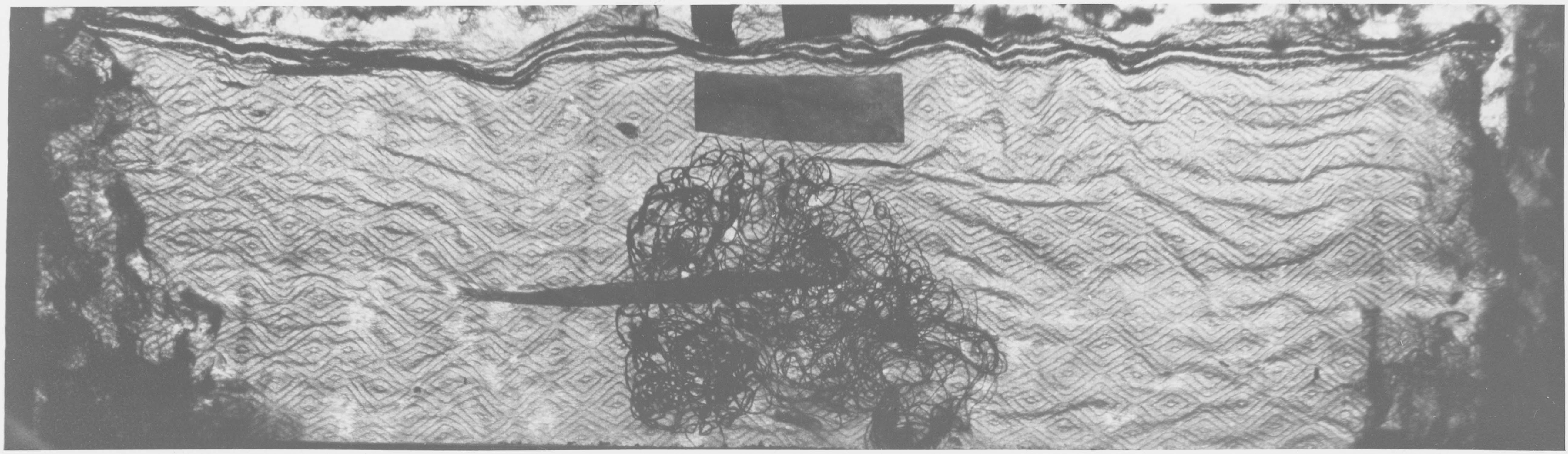 pièce de tissu ayant enveloppé la relique de saint Lupin, chanoine de saint Nazaire, vue générale