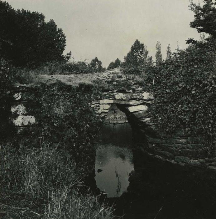 Pont gaulois dit de Sainte-Catherine (également sur commune de Plounévézel, dans le Finistère): Vue partielle