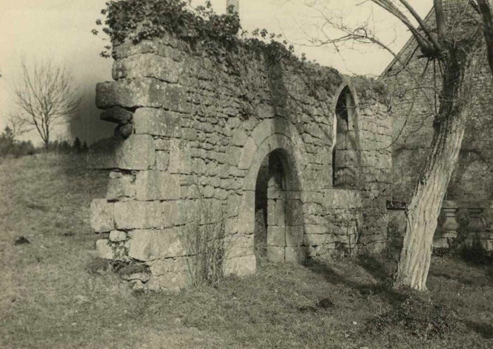 Château de la Bélinaye: Chapelle (?), vue générale des ruines