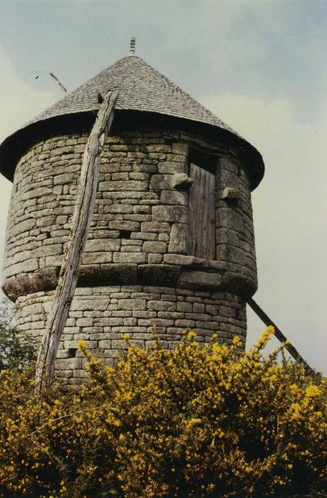 Moulin à vent des Timbrieux: Vue générale
