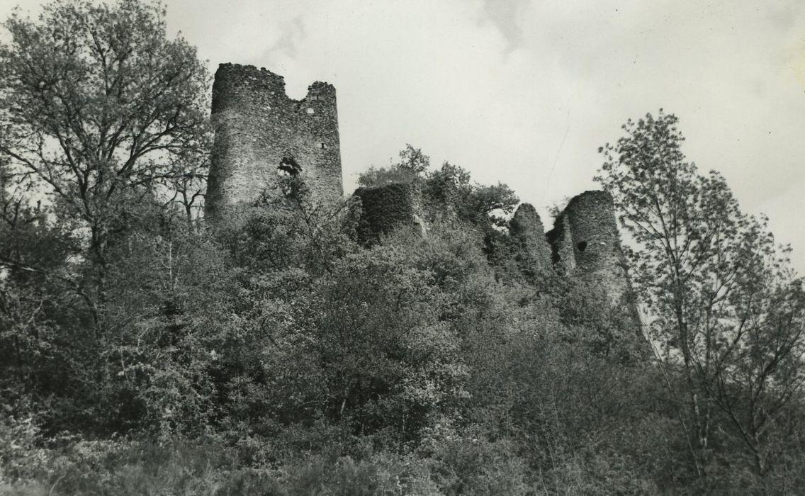Ruines du château fort de Merle ou de Chaule: Vue générale des ruines du château depuis le sud-ouest
