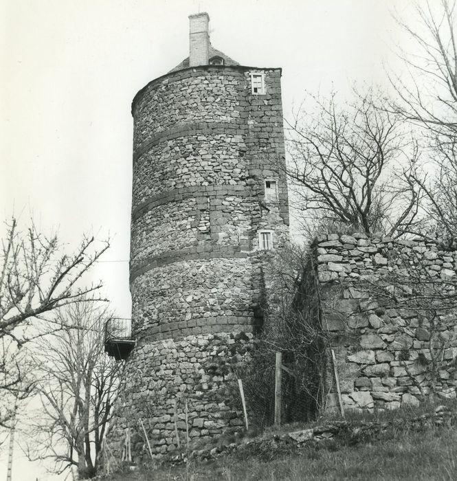 Château fort: Donjon, vue générale depuis le Sud