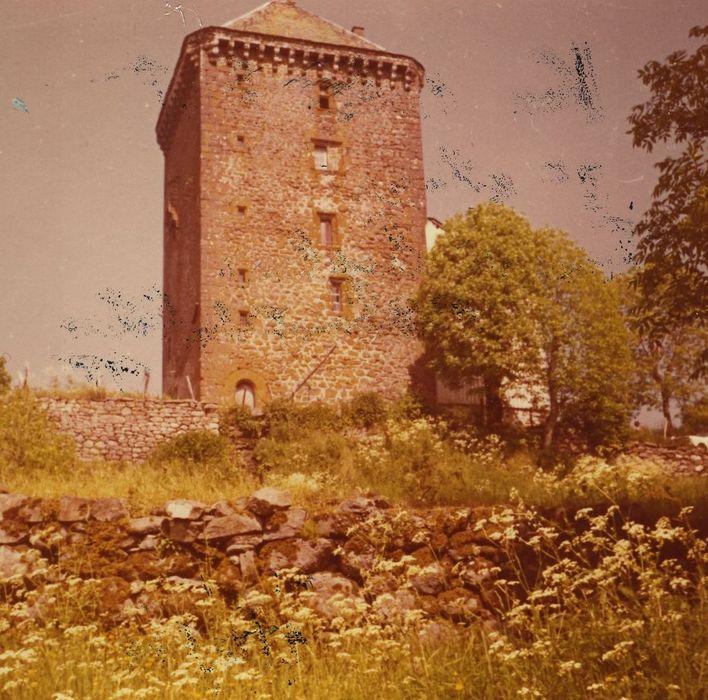 Château fort de Leybros: Elévation ouest, vue générale