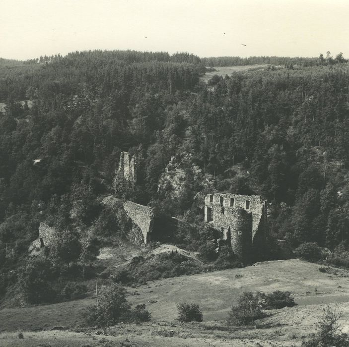 Ruines du château de Jonchères: Vue générale des ruines dans leur environnement depuis le Nord