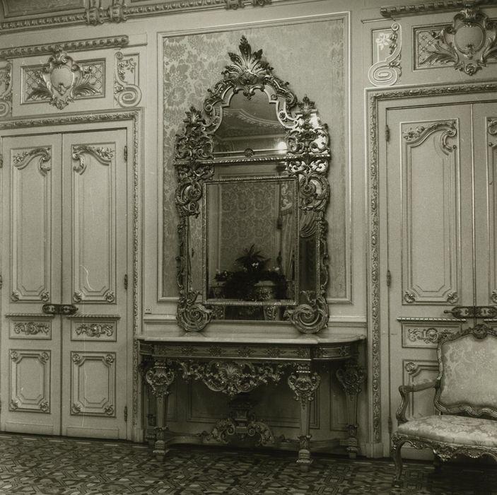 Hôtel de ville (ancien hôtel de la famille Lumière): Salon d'honneur, vue partielle