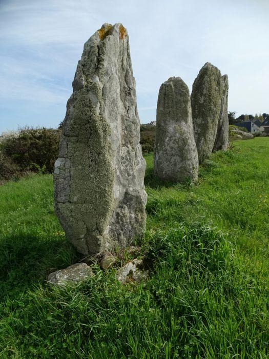 Alignements du Vieux-Moulin: Vue générale du site