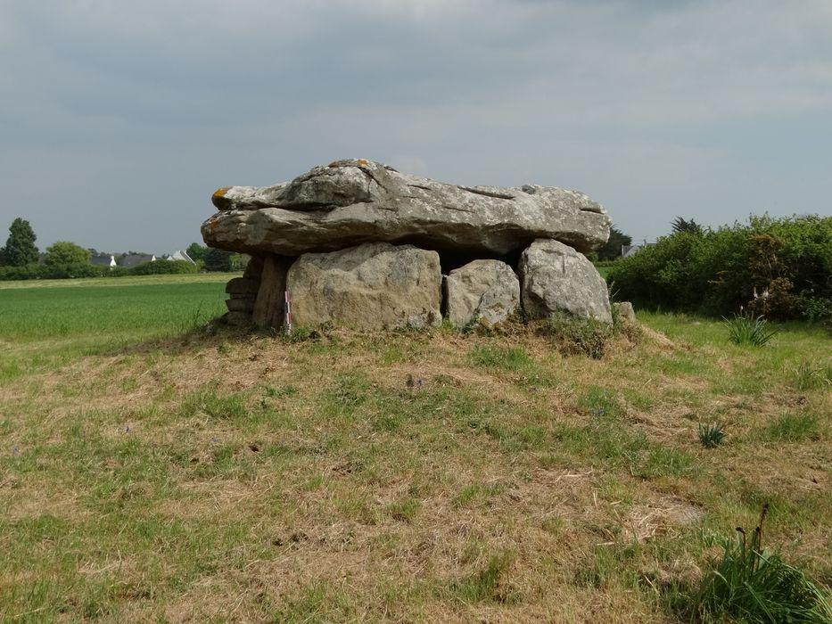 Dolmen situé au lieudit Kergazec: Vue générale