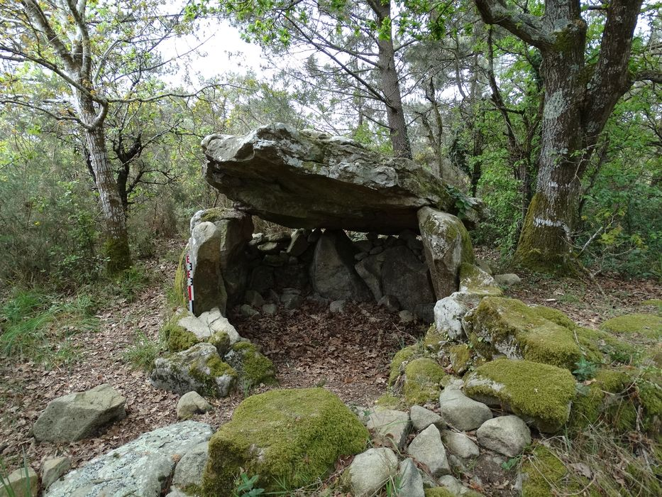Dolmen à galerie dans la base d'un tumulus circulaire à Kerdaniel