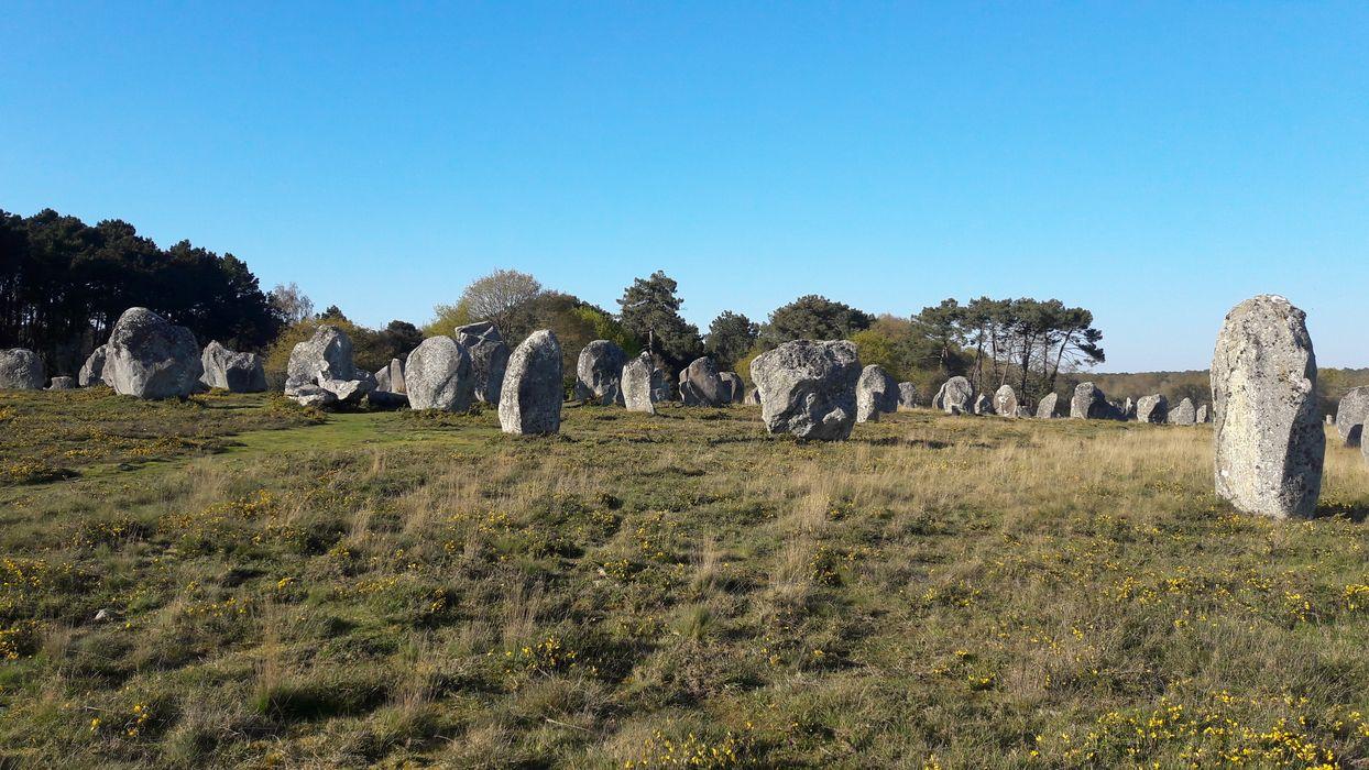 Alignement et dolmen de Kermario: Vue générale du site