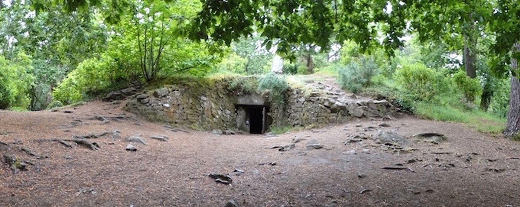 Tumulus-dolmen de Kercado: Vue générale du site