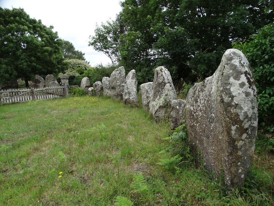 Menhirs de l'enceinte du Ménec: Vue partielle du site