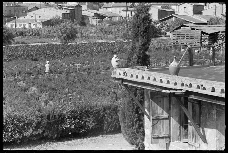 [Façade avec poteries sur le rebord du toit et jardin]