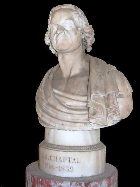 buste de Jean-Antoine Chaptal. Vue de trois-quarts droite.