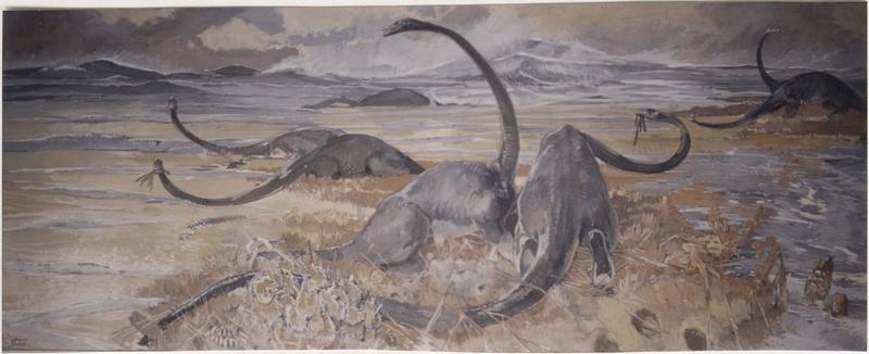 Tableau : dinosaures, vue générale