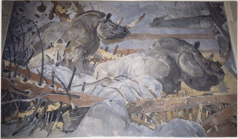 Tableau : Rhinocéros, vue générale