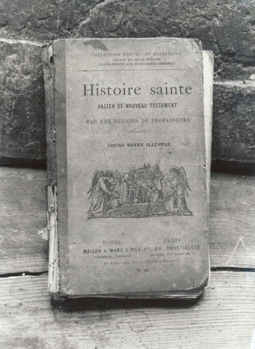 livre : Histoire sainte, Ancien et Nouveau Testament, Cours moyen illustré