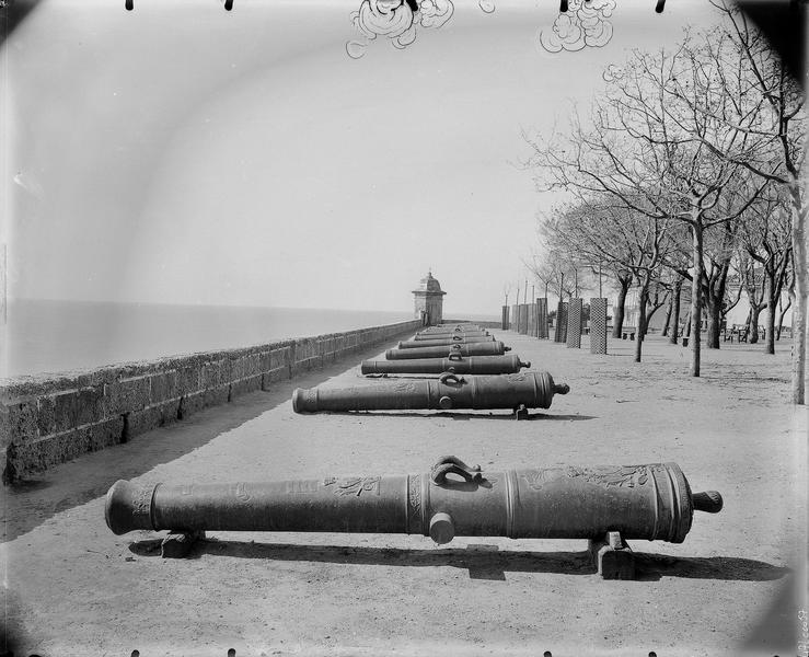 Alignement de canons, mer à l'arrière-plan