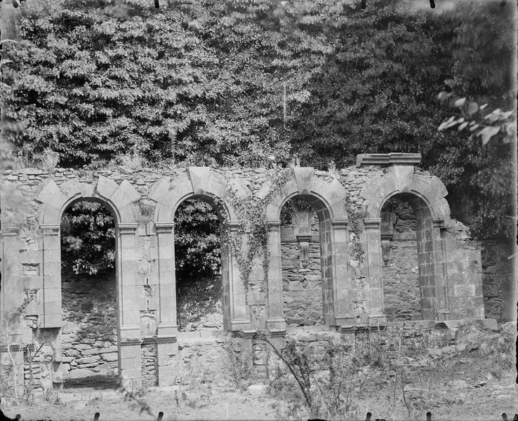 Elévation en ruine, végétation