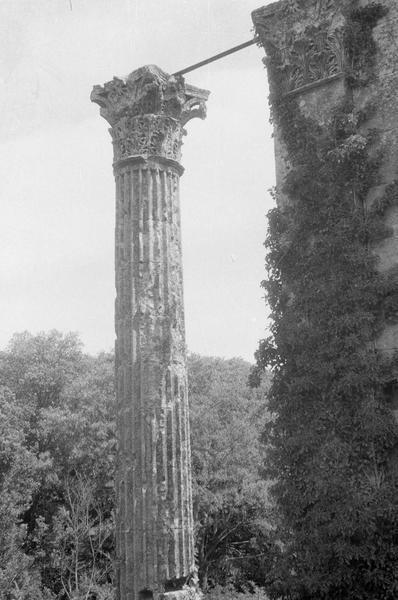 Mur en ruines et colonne corinthienne, côté sud-ouest