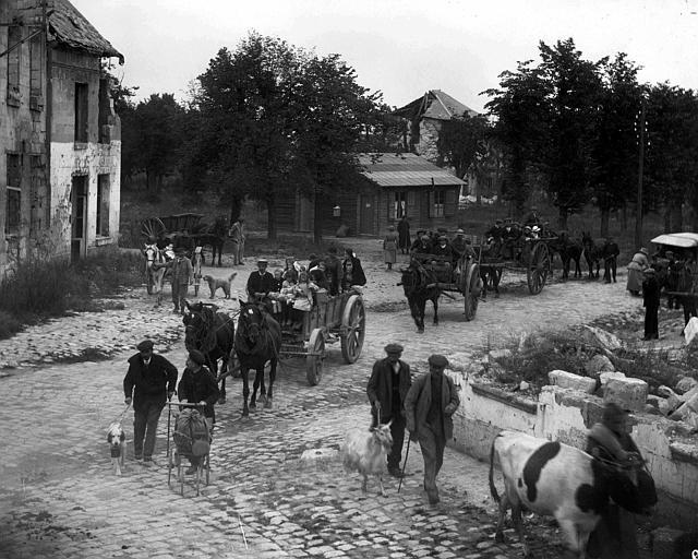 Evacuation : départ de la population d'un village, avec bagages et animaux de ferme