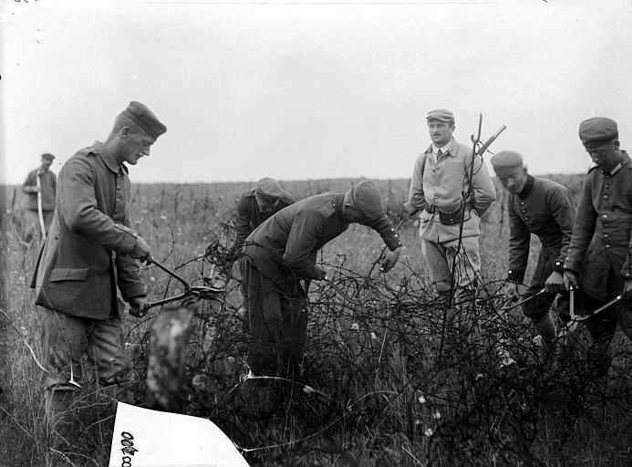 Prisonniers allemands dégageant des fils de fer barbelés dans les champs