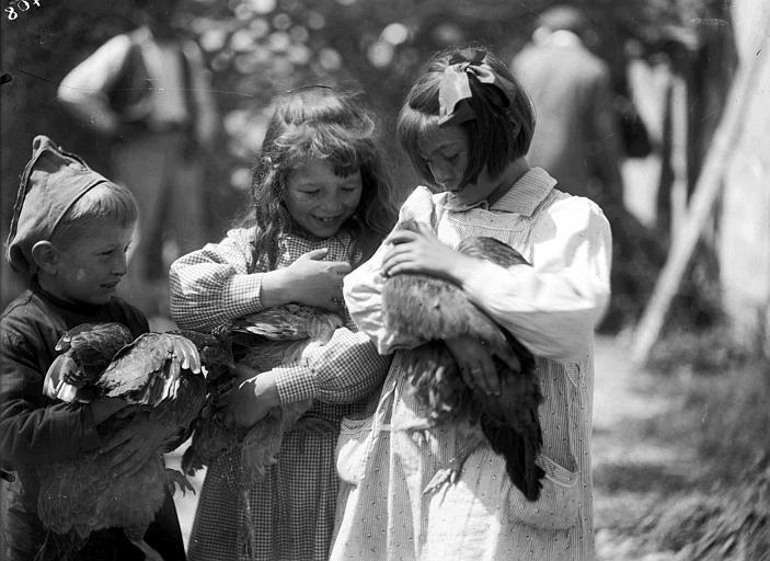 Enfants avec des poulets dans les bras
