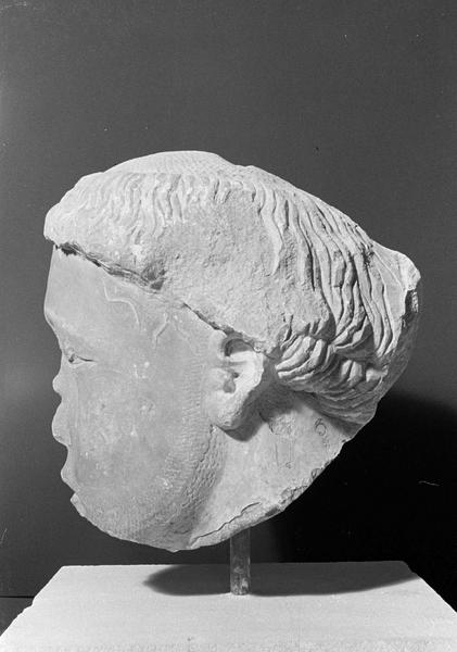 Statue en pierre de Bourgogne, fragment : tête de gisant, profil gauche
