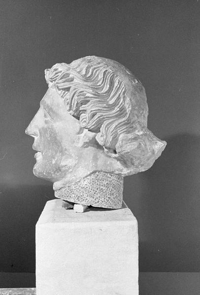 Statue en pierre de Courville, fragment : tête d'homme, profil gauche