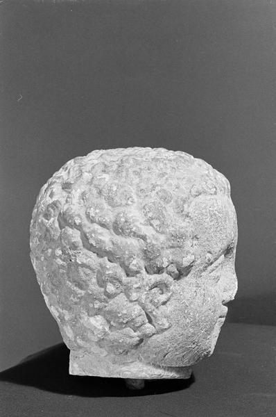 Statue en pierre de Saint-Maximin, fragment : tête d'enfant, profil droit