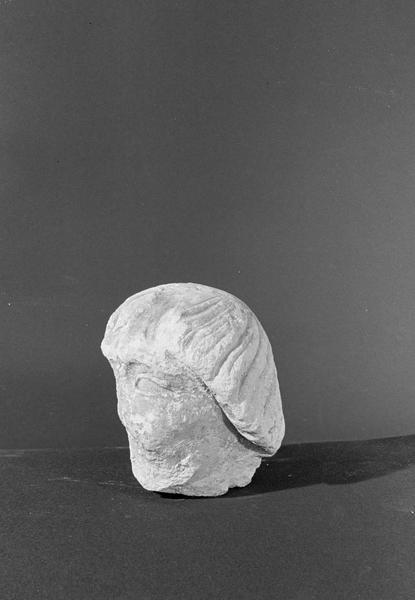 Statue en pierre de Courville, fragment : tête, de trois quarts gauche