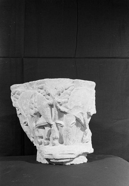 Chapiteau en pierre de Saint-Maximin orné de motifs animaux et végétaux