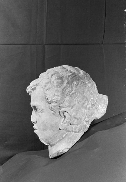Statue en pierre de Courville, fragment : tête de jeune homme, profil gauche