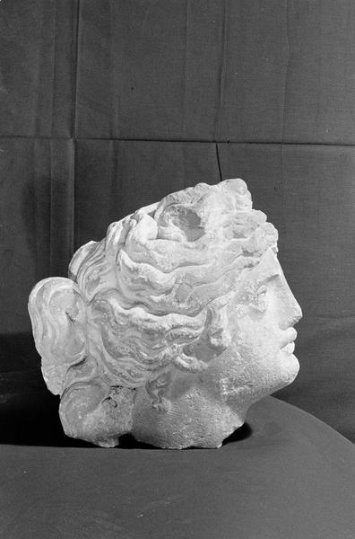 Statue en pierre de Courville, fragment : tête de femme, profil droit