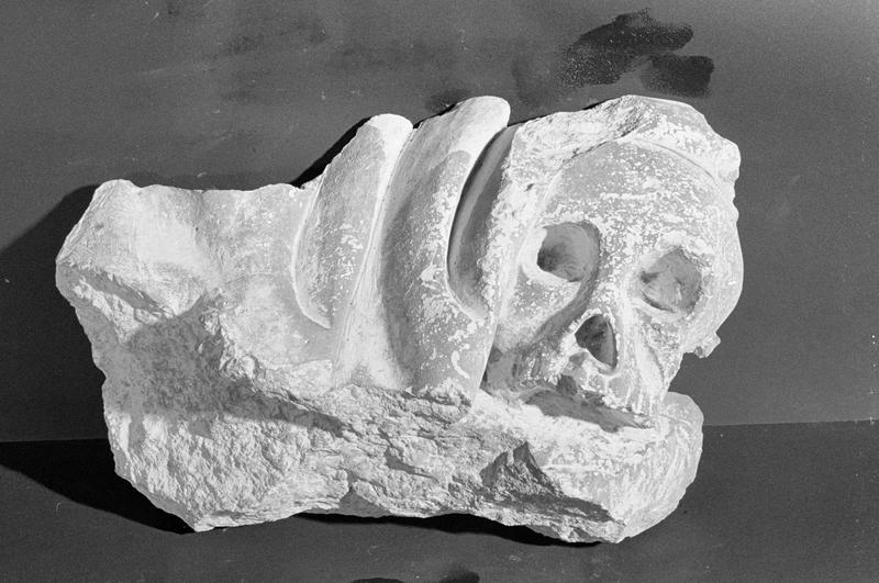 Haut-relief en pierre de Courville, fragment : tête de mort, de face