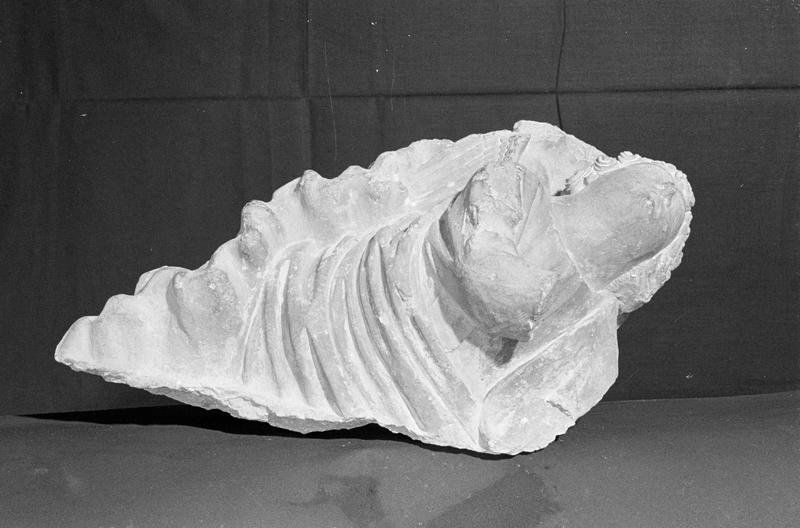 Haut-relief en pierre de Courville, fragment : ange dans les nuages, du dessous